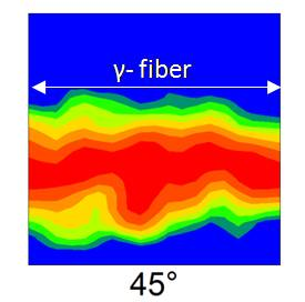 ODF section at φ2 = 45o on the RD-TD plane, of the optimized annealed cycle sample from GRADE A (B/N=0) illustrating fully developed γ-fibre beneficial for deep drawing