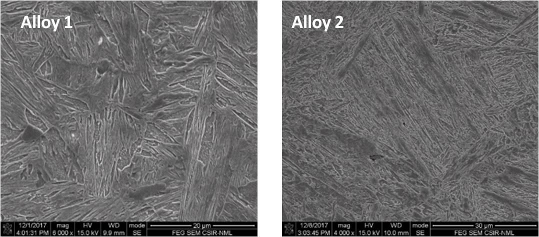 SEM image showing mostly martensitic structure in hot rolled sheet(~20 mm) of alloy 1 and alloy 2